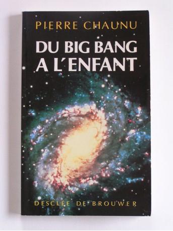 Pierre Chaunu - Du Big Bang à l'enfant